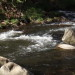 Nantahala River Lodge - A favorite Nantahala River Trout Fishing Pool