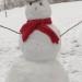 February Snowman